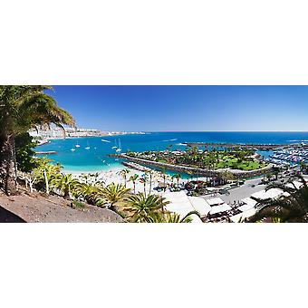 High angle view of a beach Anfi del Mar Playa de la Verga Gran Canaria Spain Poster Print