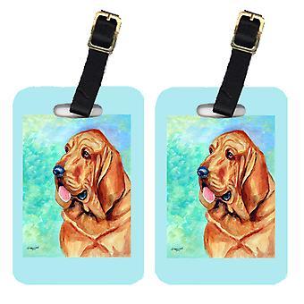 Carolines Treasures  7224BT Pair of 2 Bloodhound Luggage Tags