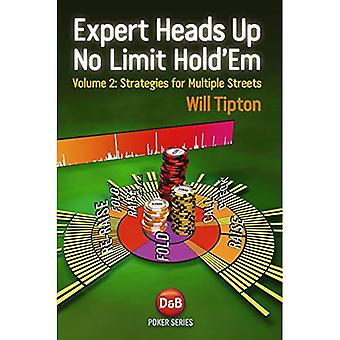 Expert Heads Up No Limit Hold'em: v. 2: Strategies for Multiple Streets