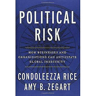 Political Risk: How Businesses and Organizations� Can Anticipate Global Insecurity