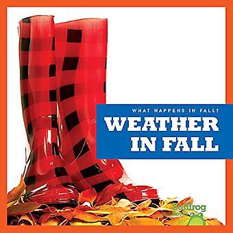 Weather in Fall by Mari C Schuh - 9781620314777 Book