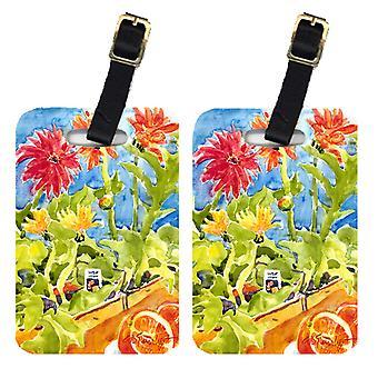 Carolines Treasures  6038BT Pair of 2 Flower - Gerber Daisies Luggage Tags