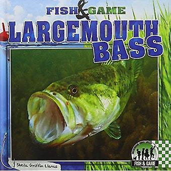 Largemouth Bass (Fish & Game)