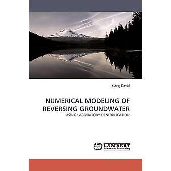 Numerical Modeling of Reversing Groundwater by David & Xiang