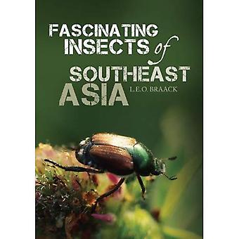 Insetti affascinanti del sud-est asiatico