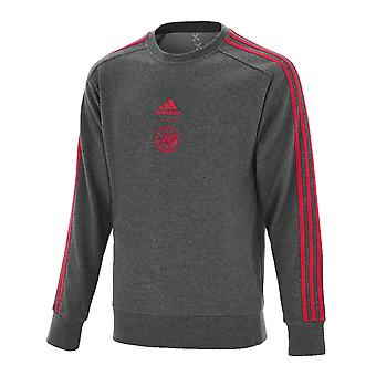 2019-2020 Ajax Adidas Crew Sweat Top (Grey)
