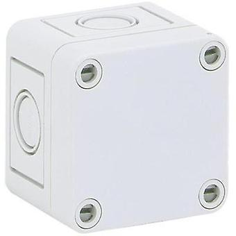 Build-in casing 65 x 65 x 57 Polystyrene (EPS) Light grey (RAL 7035) Spelsberg PS 77-6-m 1 pc(s)