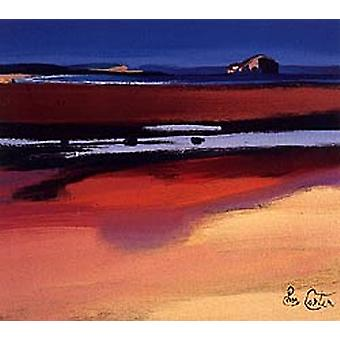 Pam Carter print - Bass Rock