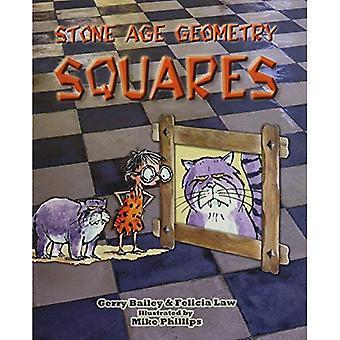 Stone Age geometrie pleinen