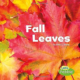 Fall Leaves (Celebrate Fall)