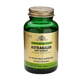 Solgar Standardised - Full Potency Astragalus Root Extract Vegetable Capsules, 60