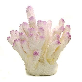 Ornament Acropora Coral White