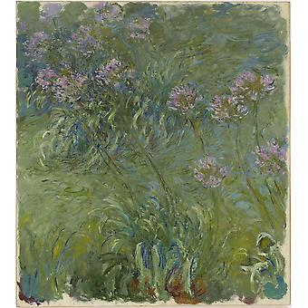 Claude Monet - Agapanthus Green Poster Print Giclee