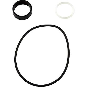 Hayward SPX0733Z2A O-Ring and Washer Set for Multiport Valve