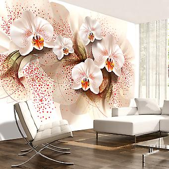 Wallpaper - Pale yellow orchids
