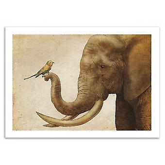 Art-Poster - A New Friend - Eric Fan 50 x 70 cm
