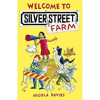 Välkommen till Silver gatan gård