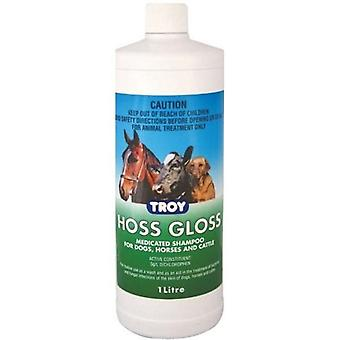 Troy Hoss Gloss 1 L