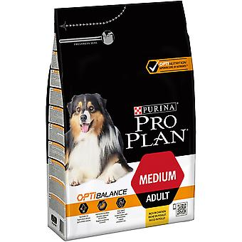 Pro Plan Medium Adult Rich in Chicken (Dogs , Dog Food , Dry Food)