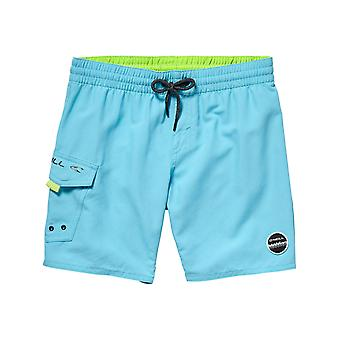 ONeill Dresden Blue Sunstruck Kids Boardshorts