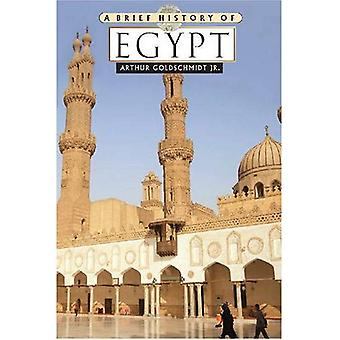 A Brief History of Egypt (Brief History) (Brief History Of... (Checkmark Books))