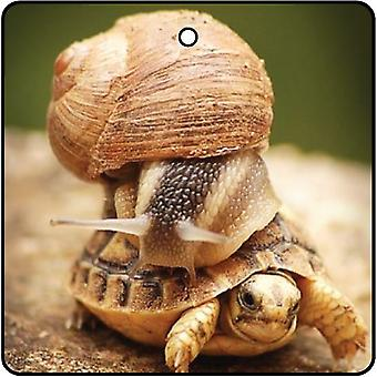 Snail And The Tortoise Car Air Freshener