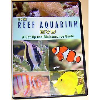 Reef Aquarium TV: En visuel visning af smukke Re [DVD] USA importerer