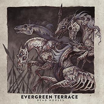Evergreen Terrace - importación de caballos muertos [CD] Estados Unidos