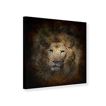 Lærred Print løve portræt