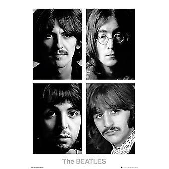 The Beatles White Album Maxi Poster