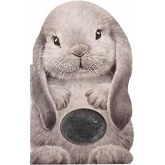 Furry Bunny by Annie Auerbach - 9781438050119 Book