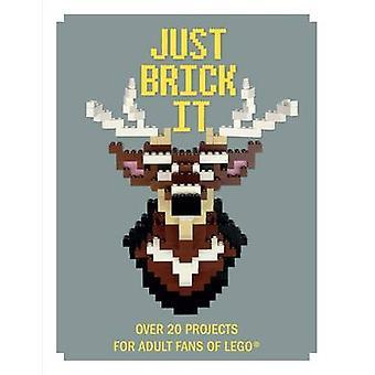 Just Brick IT-över 20 projekt för vuxna fans av LEGO av David scarf