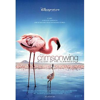 The Crimson Wing Mystery of the Flamingos Movie Poster Print (27 x 40)