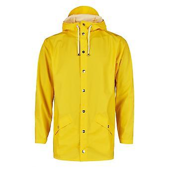 雨のジャケット
