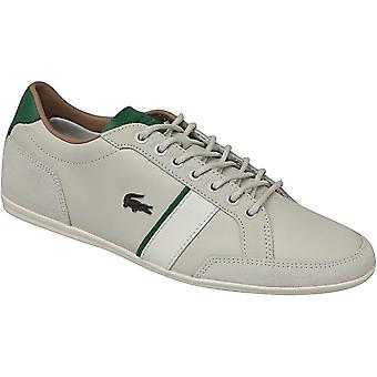Lacoste Alisos 117 1 CAM1018098 universal summer men shoes