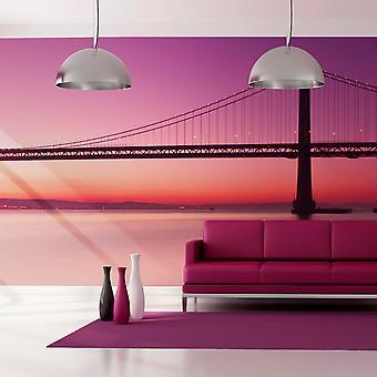 إكس إكس خلفية-خليج-سان فرانسيسكو