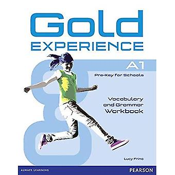 Gold Experience A1 Workbook Without Key: A1: Pre-Key for Schools