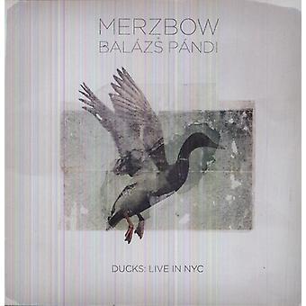 Merzbow & Balazs Pandi - ænder: Bor i Nyc [Vinyl] USA import