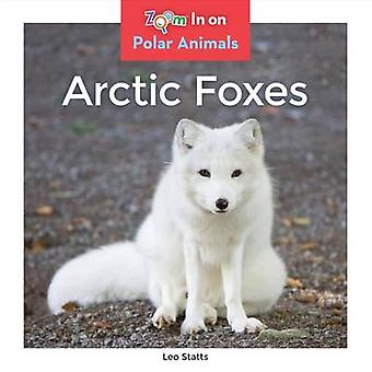 Arctic Foxes by Leo Statts - 9781680791853 Book