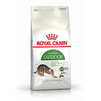 Royal Canin Outdoor 30 Feline (Cats , Cat Food , Dry Food)