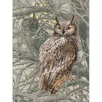 Eagle Owl Counted Cross Stitch Kit-11.75