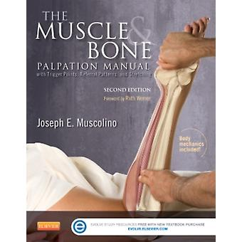 The Muscle and Bone Palpation Manual with Trigger Points Referral Patterns and Stretching 2e (Paperback) by Muscolino Joseph E.