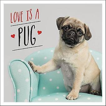 Liefde is een mopshond