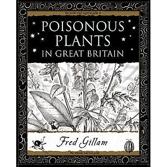 Poisonous Plants in Great Britain (Wooden Books Gift Book)
