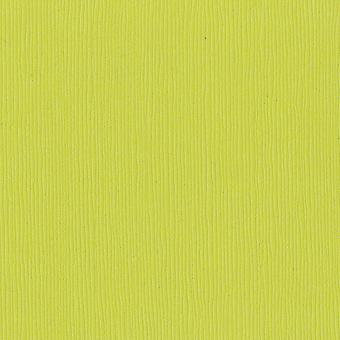 Bazzill papier cartonné 12 « X 12 » Granny Smith Grass Cloth OFAC E 5159
