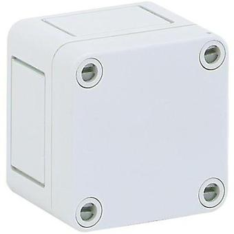 Build-in casing 65 x 65 x 57 Polystyrene (EPS) Light grey (RAL 7035) Spelsberg PS 77-6 1 pc(s)