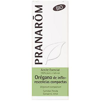 Pranarom Essential Oil Oregano Inflorescences Bio