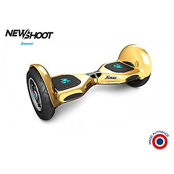 hoverboard spinboard x cross © fine gold