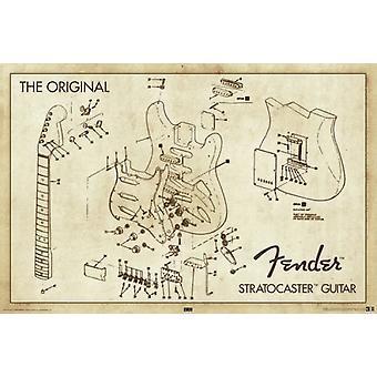 Fender - Stratocaster Diagram Poster Poster Print