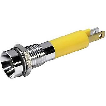 CML LED indicator light Yellow 12 Vdc 19050252